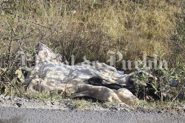 Dejan dos cadáveres encobijados a un costado del Periférico Ecológico,