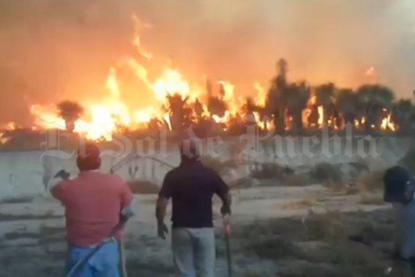 Combaten incendio forestal entre Oriental y Tepeyahualco