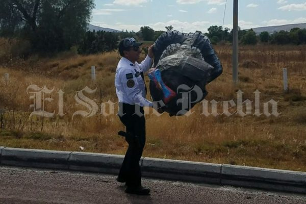 Un pavo de cartón paralizó la circulación en la autopista Puebla-Orizaba