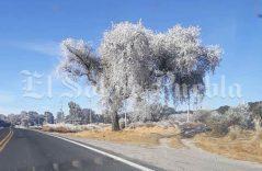 Postales en ensueño dejan las bajas temperaturas en Puebla