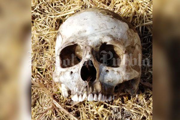 En huerto de durazno encuentra osamenta en Tlalancaleca