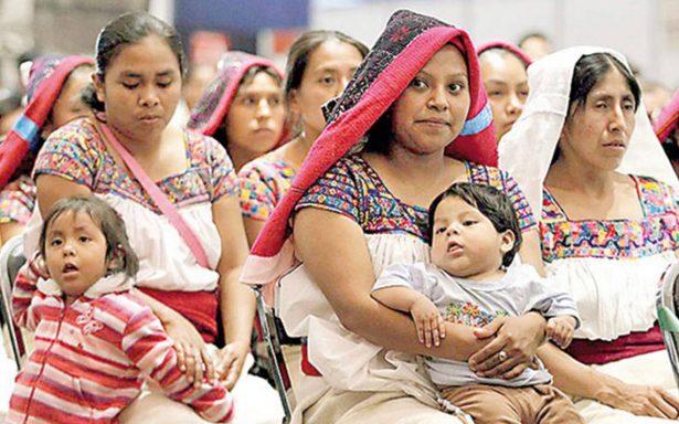 Mujeres indígenas de Veracruz sobreviven con cinco pesos al día: UGOCP