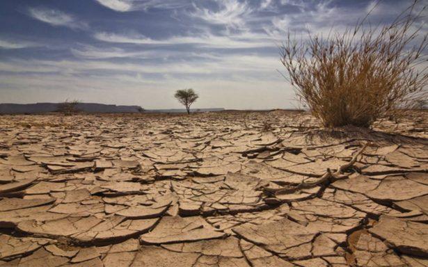 Compañías olvidan el cambio climático en informes financieros