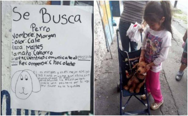 Tras extraviarse, perrito Morgan regresa a casa gracias a dibujo de su dueña