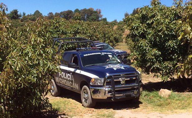 Operativos en las zonas aguacateras de Michoacán