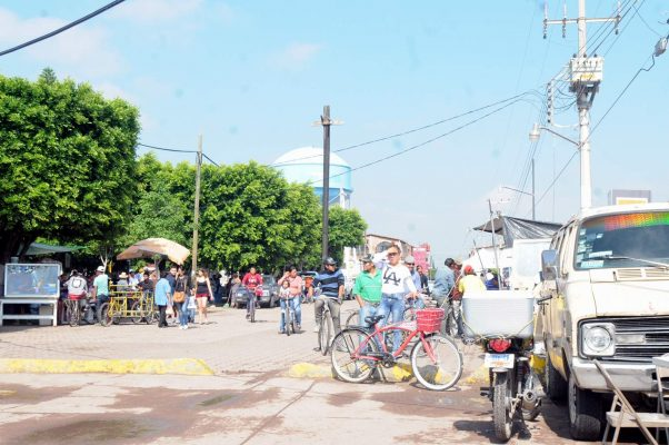 Garantizan seguridad durante XIII edición de la Expo Nopal