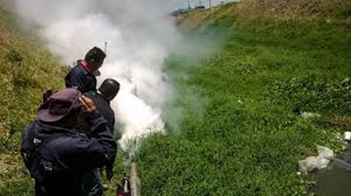 Aumentan medidas para prevención del dengue