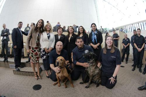 Héroes caninos, en el Congreso