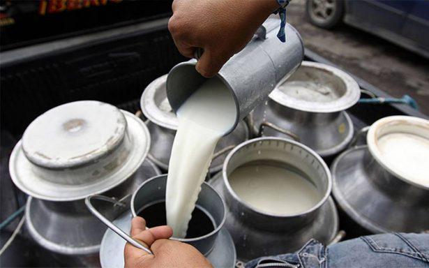 Busca sector lechero en México vender su producto a China