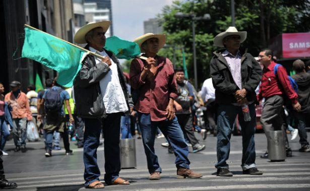 Cerca de cinco mil campesinos marchan en la CDMX en contra del TLCAN
