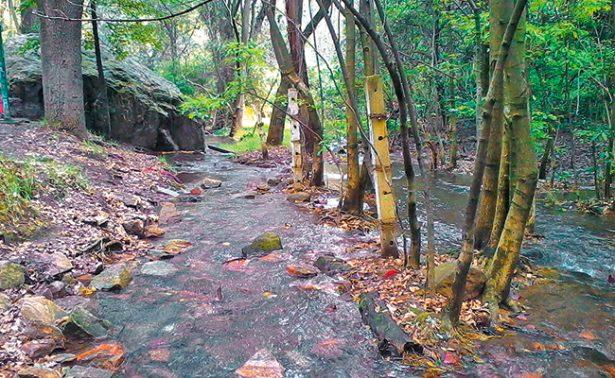 """Semarnat """"olvida"""" 55 áreas protegidas y las deja sin plan de manejo"""