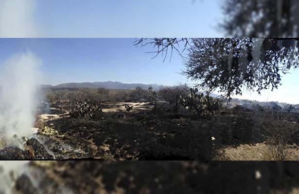 Incendio arrasó con 50 hectáreas en las comunidades La Laja y Fuentezuelas
