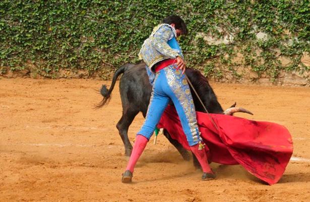 JOSÉ Andrés Origel tendrá la oportunidad de demostrar su arte y valor.