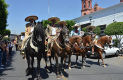 PARTÍCIPES en la 40 Cabalgata sanjuanense.