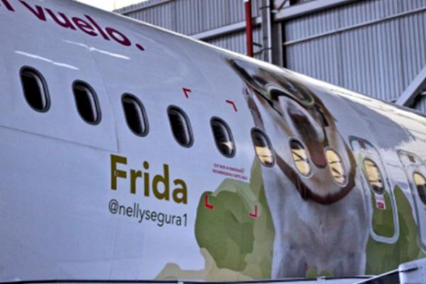 Aerolínea realiza homenaje a Frida, la perrita rescatista