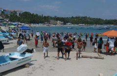 Arriba a playas de Puerto Escondido un pequeño delfín