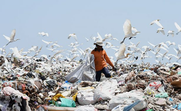 En México cada día desechan nueve millones de botellas de plástico