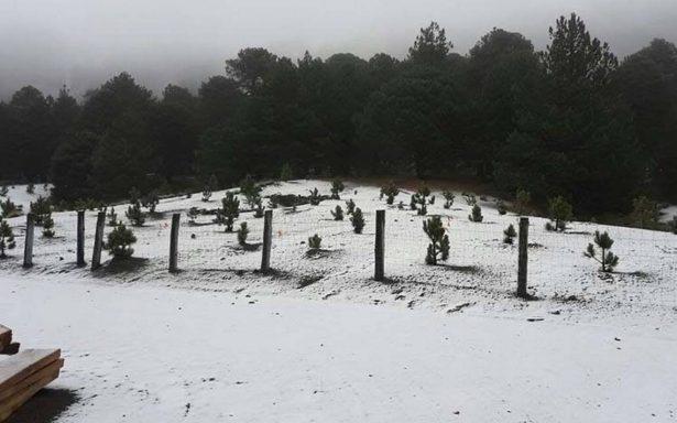 Nevado de Colima registra caída de nieve, recomiendan no acercarse