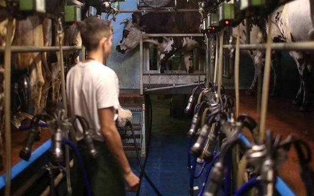 México continúa en apoyo de la expansión del sector lácteo