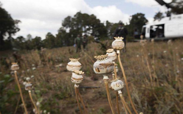 Narco mexicano, mayor amenaza en EU: DEA