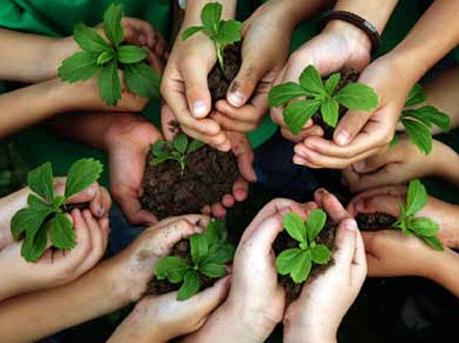 Ecología brinda pláticas de medioambiente a niños de primaria