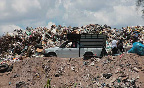 Ex basurero en Rancho Nuevo, en última fase para la reforestación