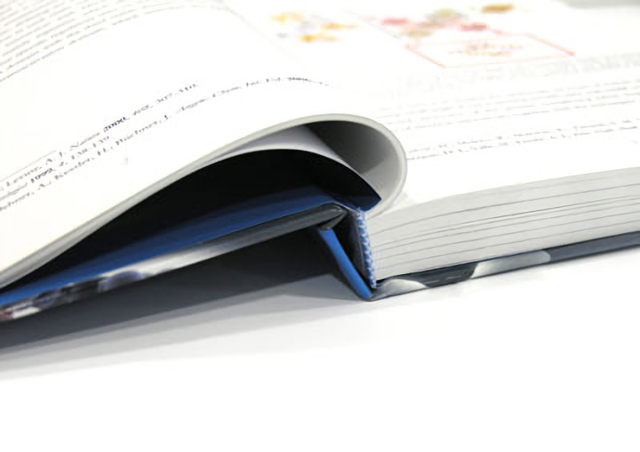 Diferencias entre tesis y tesinas