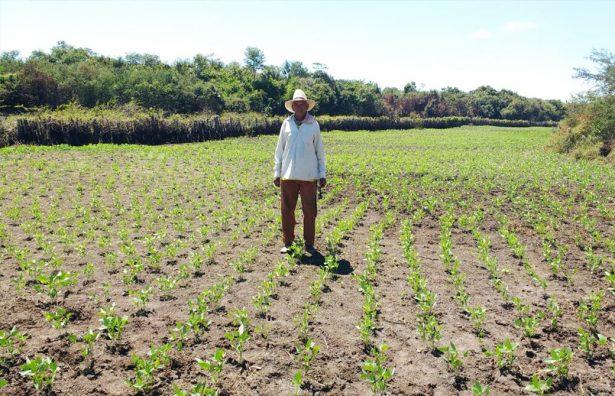 El campo requiere apoyo para salir del abandono y ser productivo