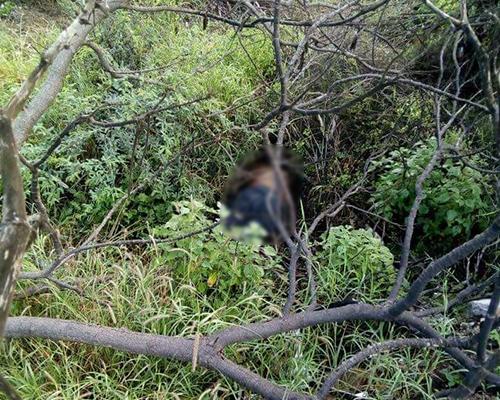 Encuentran el cuerpo de un hombre en la carretera a Rioverde