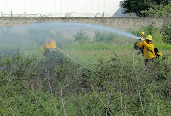 Combatientes potosinos contra el fuego ayudan a Canadá: Conafor