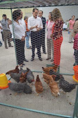 Entrega SAGARPA paquetes de granjas avícolas 182 familias del Altiplano