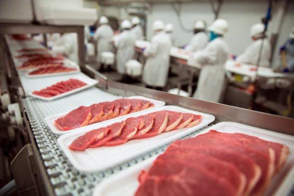 Tamuín exportará carne a Qatar