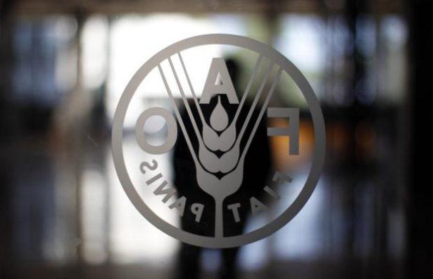 La FAO instalará en el municipio una agencia de desarrollo rural