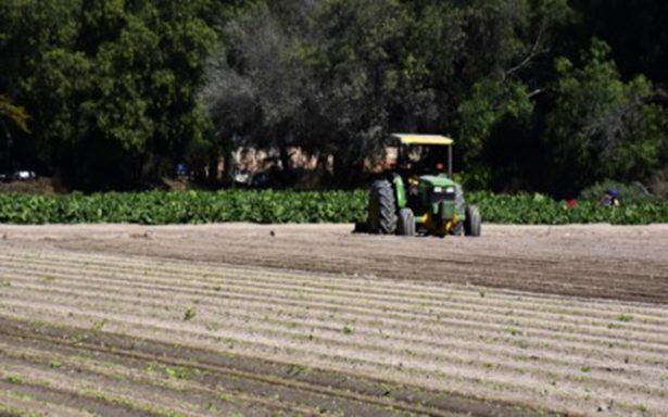 Productores agrícolas esperan pago del seguro catastrófico