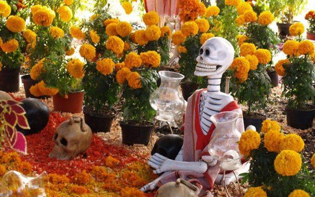 Inició floración de Cempasúchil, dará vida a ofrendas soledenses