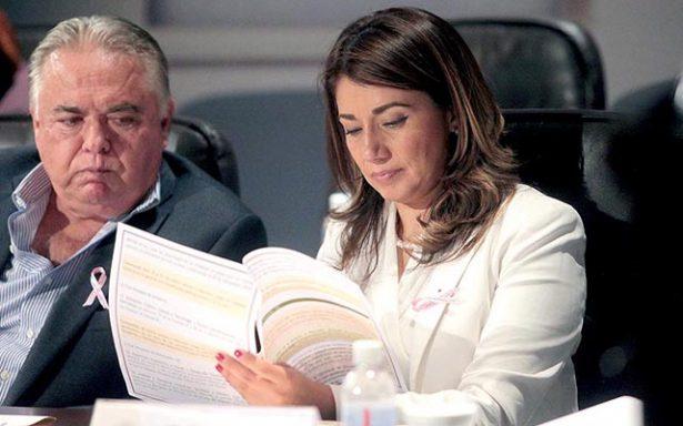 """La diputada Josefina Salazar Báez, consideró que una alternativa que también puede ser muy viable es la implementación de """"brigadas"""""""