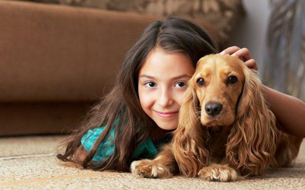 Las mascotas se pueden convertir en un peligro para la salud humana