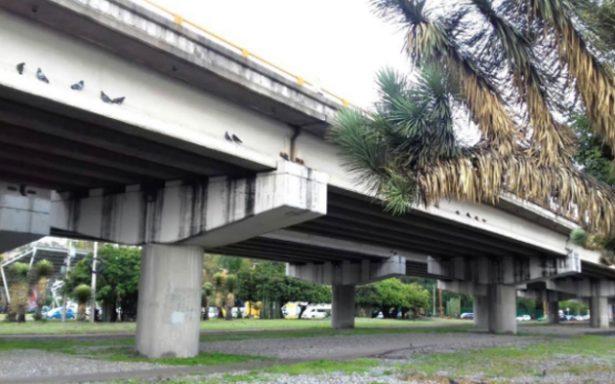 Los puentes vehiculares, sin daños