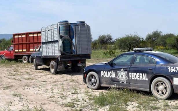 Detienen por delitos a 12 personas y decomisan más de 50 kg de droga