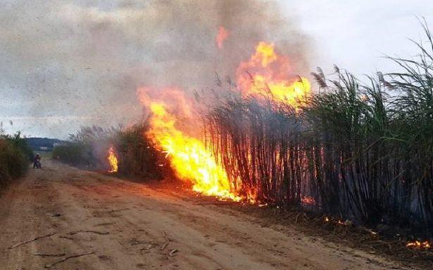 Sería sancionado ingenio Plan de San Luis por quemar sin permiso