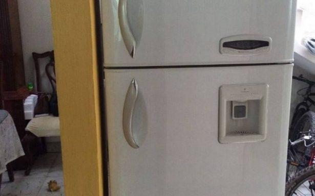 Mujer guarda a su bebé muerto en el refrigerador de su casa