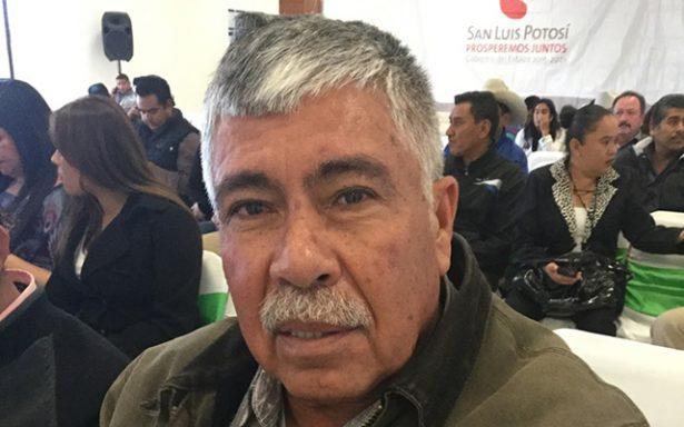 Siniestro agrícola en el Altiplano por heladas y sequía