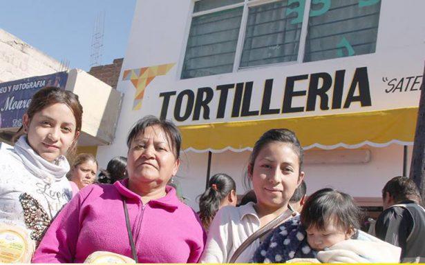Sin cambios el programa social de tortillerías subsidiadas: Navarro Múñiz