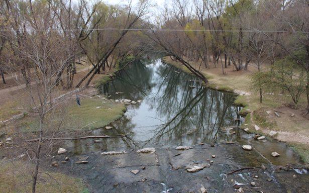 Interés en rehabilitar la rivera del Rio Verde