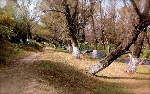 Saquean ilegalmente grava y arena de cuenca del Rio Verde