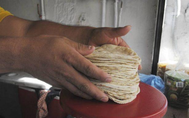 Cofece multa a tortilleros de Jalisco por elevar precio