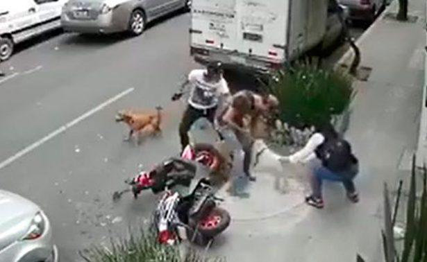 [VIDEO] Feroz ataque de un pitbull a perro y su dueño en la CDMX