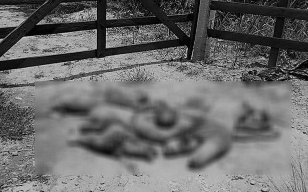 Brutalidad al máximo en Oaxaca; encuentran cuerpos destazados en San Juan Lalana