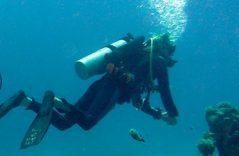 Afortunado submarinista sobrevive a ataque de tiburón de 4 metros