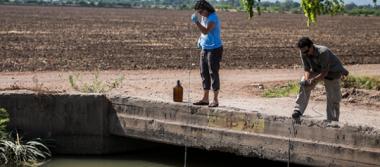 'Hay huella de plaguicidas en ríos y mar de Sinaloa'